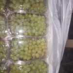 Grapes-Packing-28