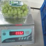 Grapes-Packing-37